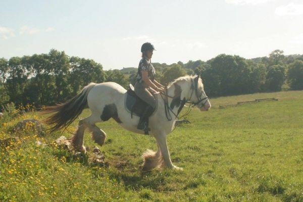 L'équitation: quels bienfaits pour les enfants?